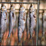 """Convegno """"Tutela e valorizzazione dell'essiccazione tradizionale della sardina"""""""